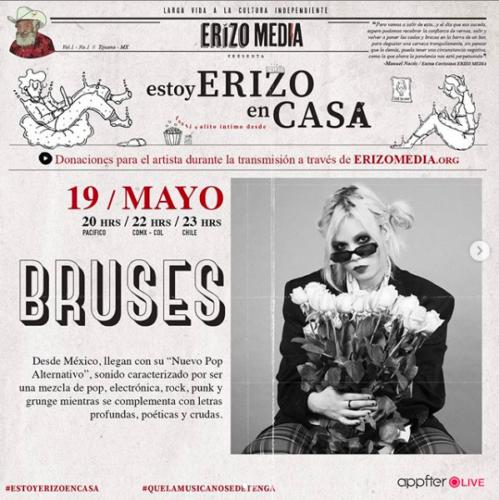 Bruses-Estoy-Erizo-en-Casa-499x500.png