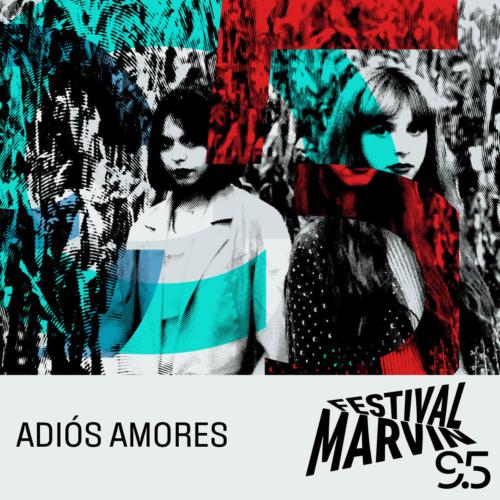 Adios-Amores-500x500.jpeg