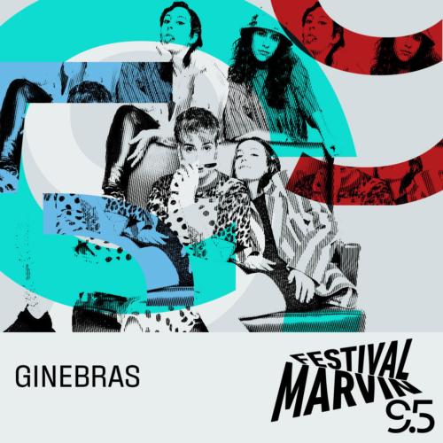 Ginebras-500x500.jpeg