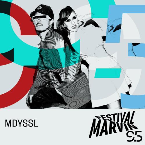 MDYSS-500x500.jpeg