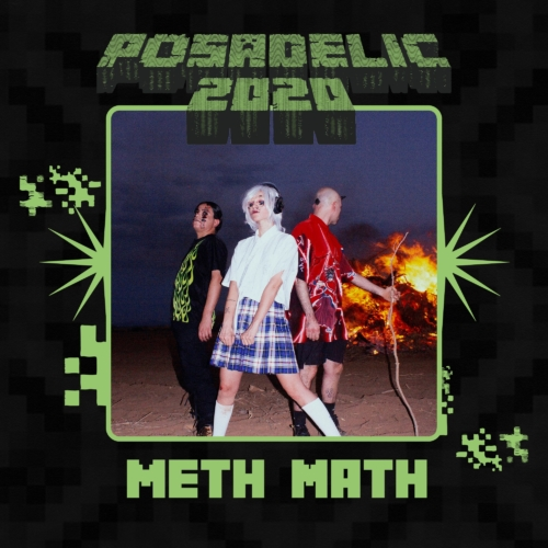 Posadelic-Festival-20202-500x500.jpg