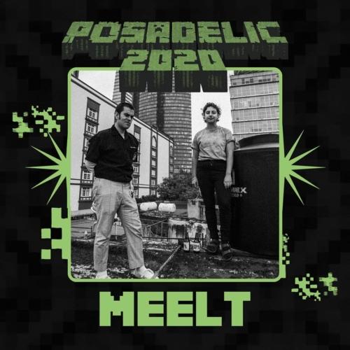 Posadelic-Festival-20203-500x500.jpg