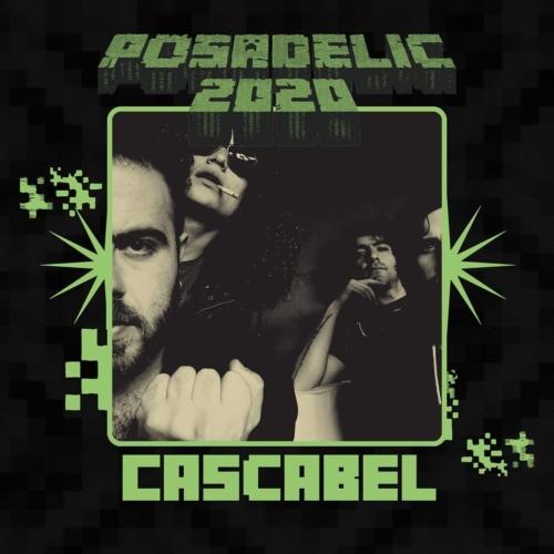 Posadelic-Festival-20206-500x500.jpg